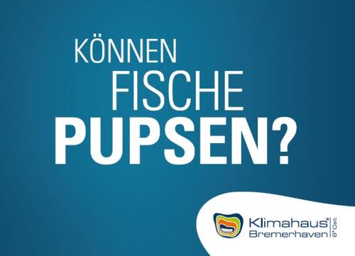 citycards_klimahaus_fische